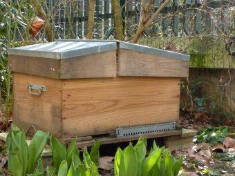 Ma ruche d'élevage 16 cadres. Paris est propice à l'élevage car les températures y sont plus élevées et le vent moins fort.