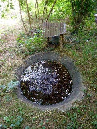 Une marre à gibier créée par des chasseurs se trouve à quelques mètres d'un rucher. Les abeilles y viennent boire comme les autres animaux sauvages.