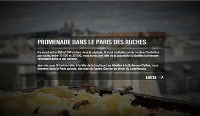 Promenade dans le Paris des ruches