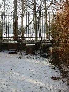 Les ruches de Paris sous la neige, en janvier 2009.