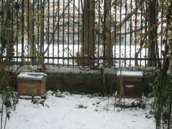 Les ruches de Paris Ménilmontant, en décembre 2009.